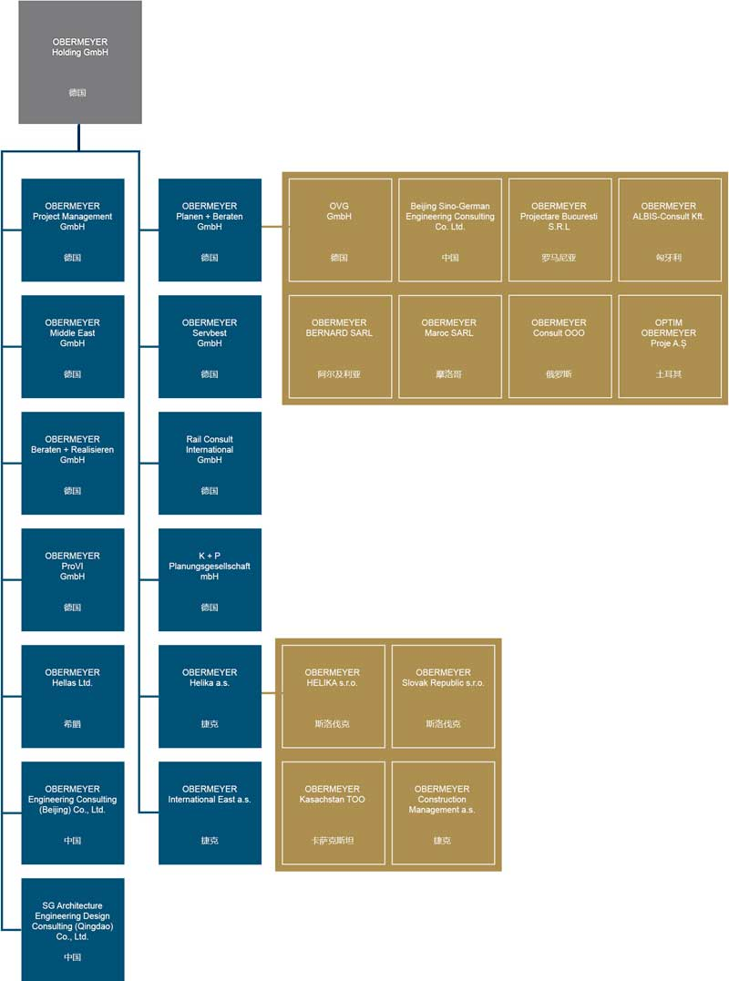 OBERMEYER organisation diagram